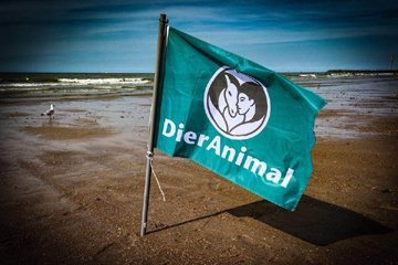 Het logo van DierAnimal op een vlag